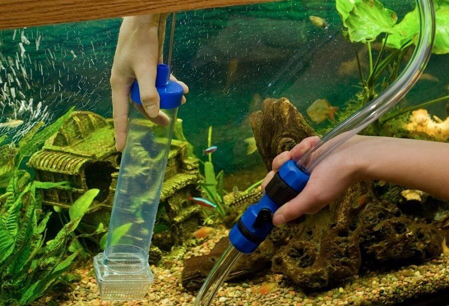 До чого сниться міняти воду в акваріумі