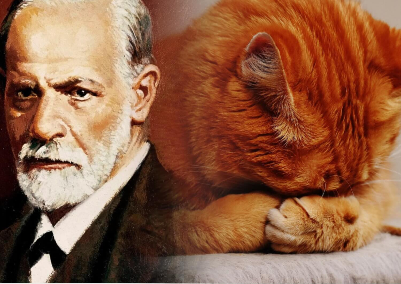 К чему снится рыжий кот сонники.