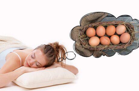 Наснилися курячі Яйця сирі, розбиті, тухлі або варені - тлумачення снів про яйця за сонниками