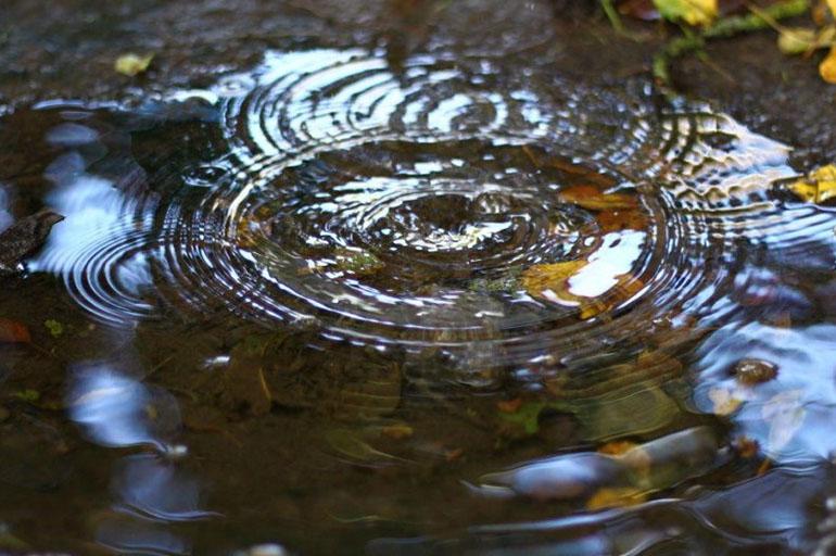 Вода после дождя