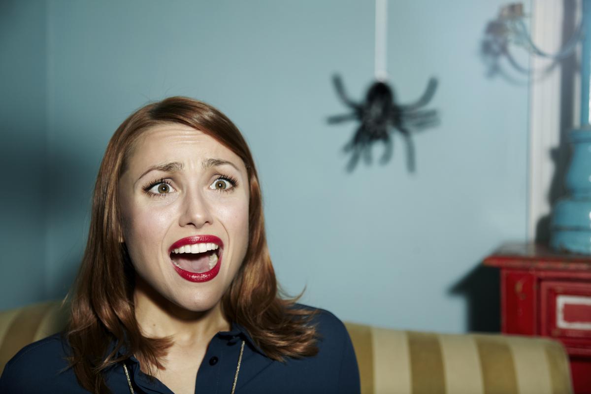 До чого сниться павук трактування.