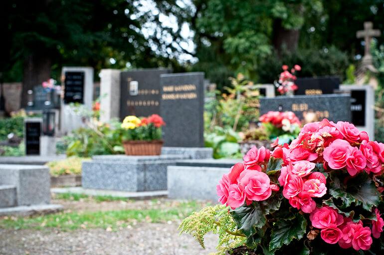 Принести цветы на могилу