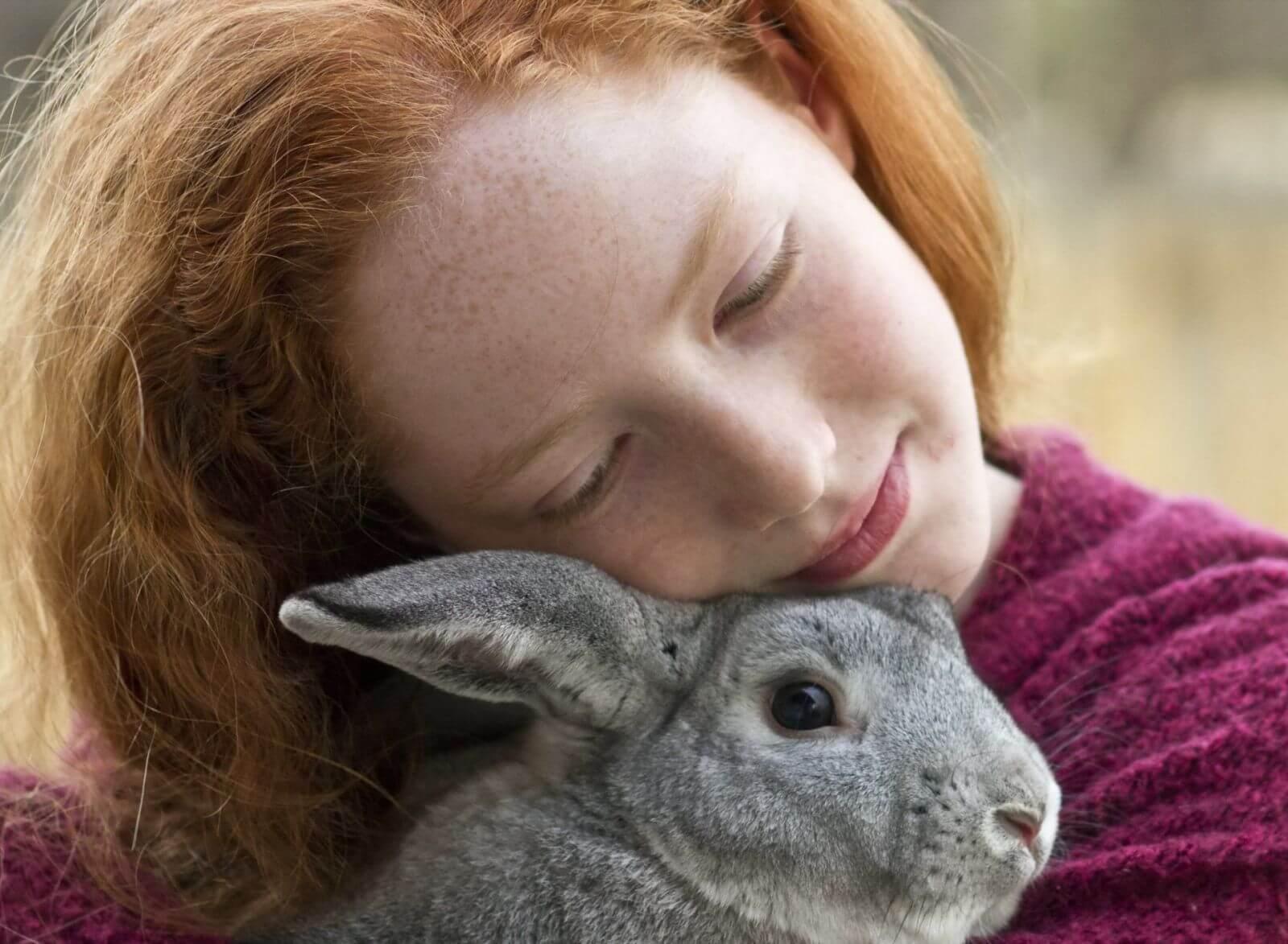 К чему снится кролик значение.