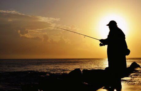 55 толкований сна Ловить рыбу во сне для женщины или мужчины, руками и на удочку