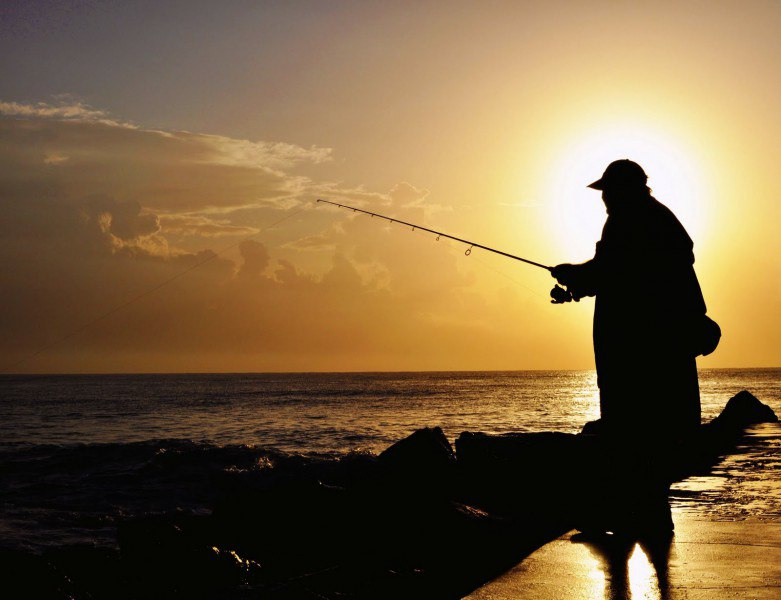 Ловить рыбу во сне значение.