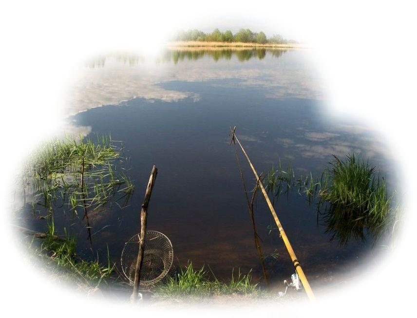 К чему снится рыбалка значение сна.