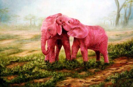 До чого сниться Слон жінці або чоловікові — 45 тлумачень сну